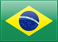 SMS Marketing in Brazil