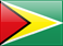 SMS Marketing in Guyana